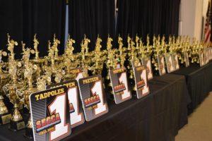 2017 Award winners